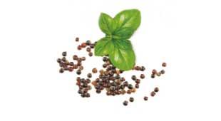 Basilikum und Quinoa